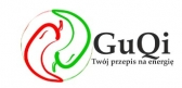 Gu Qi